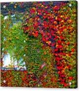 Lost Window Acrylic Print