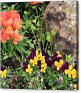 Lots Of Color Acrylic Print