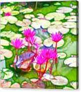 Lotus Flower 3 Acrylic Print