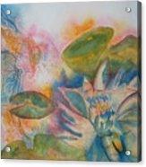 Lotus Flower Abstract Acrylic Print