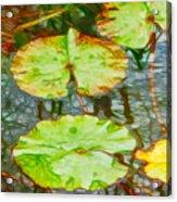 Lotus Flowers Leaves Acrylic Print