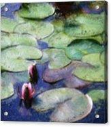 Lotus Lake Acrylic Print