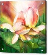 Lotus - Spirit Of Life Acrylic Print