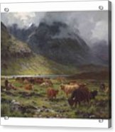 Louis Bosworth Hurt 1856-1929 Highland Cattle In A Glen Acrylic Print