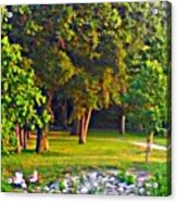 Lounging On The Green Acrylic Print