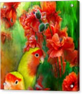 Love Among The Poppies Acrylic Print