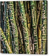 Love And Bamboo Acrylic Print