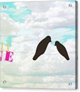 Love Birds Love Line Acrylic Print