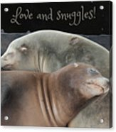 Love And Snuggles Acrylic Print