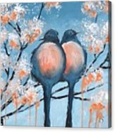 Love Birds Acrylic Print by Holly Donohoe