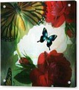 Love Blossoms Acrylic Print