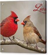 Love Acrylic Print by Bonnie Barry