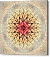 Love From Within Mandala Acrylic Print