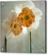 Love In Bloom Acrylic Print