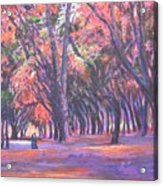 Love In Lal Bagh 1 Acrylic Print