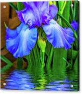Love Is Blue 2 Acrylic Print