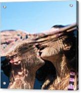 Love Kiss II Acrylic Print