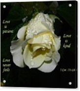Love Never Fails Acrylic Print