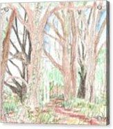 Love Of Nature Acrylic Print