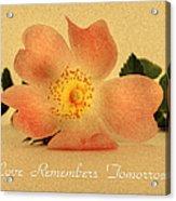 Love Remembers Tomorrow Acrylic Print