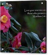 Love Your Enemies Acrylic Print
