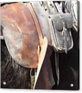 Loved Leather Tack Acrylic Print
