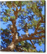 Lovely As A Tree Acrylic Print