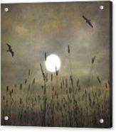 Lovers Moon Acrylic Print