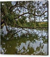 Low Country Days Acrylic Print