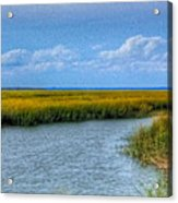 Low Country Vista Acrylic Print