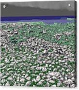 Low Tide Color 3 Acrylic Print