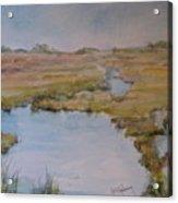 Low Tide Acrylic Print by Dorothy Herron