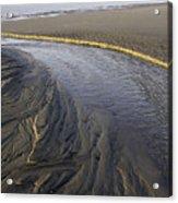 Low Tide Morning Acrylic Print