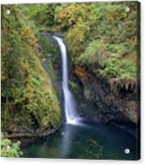 Lower Butte Creek Falls Plunging Into A Pool Acrylic Print