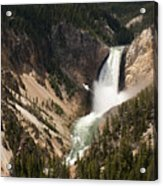 Lower Falls Yellowstone River Acrylic Print