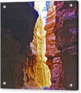 Lower Level Of Wall Street On Navajo Trail In Bryce Canyon National Park, Utah Acrylic Print