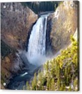 Lower Yellowstone Falls From Inspiration Point Acrylic Print