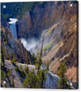 Lower Yellowstone Falls Acrylic Print