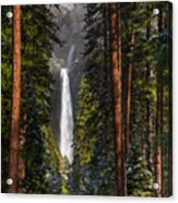 Lower Yosemite Falls Acrylic Print