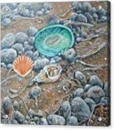 Lowtide Treasures Acrylic Print