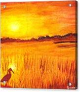 Loxahatchee Sunrise Acrylic Print