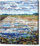 Loxahatchee Wetlands Acrylic Print