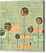 Lubi - S02-34ab Acrylic Print