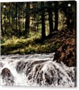 Lucia Falls In July Acrylic Print