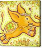 Lucky Elephant Orange Acrylic Print