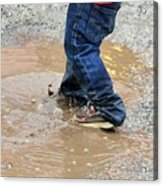 Lucky Puddle  Acrylic Print