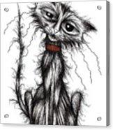 Lucky The Cat Acrylic Print
