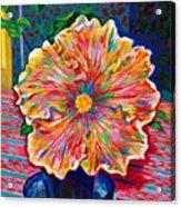 Lucky We Live Hibiscus Acrylic Print