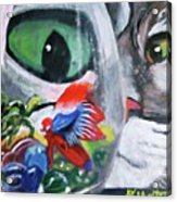 Lulu's Fish Wish Acrylic Print