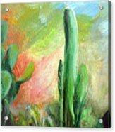 Lumiere De Desert Acrylic Print